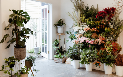 Fresh Flowers & Seasonal Blooms | Thrive Flowers & Events: Melbourne Flower Delivery