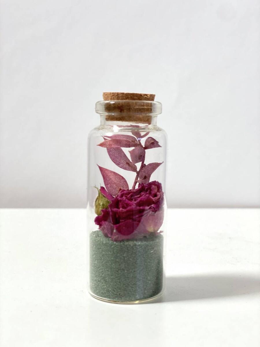 Everlasting Dried Flowers, Comfort Sustainable Flower Arrangements | Order Online, Thrive Flowers