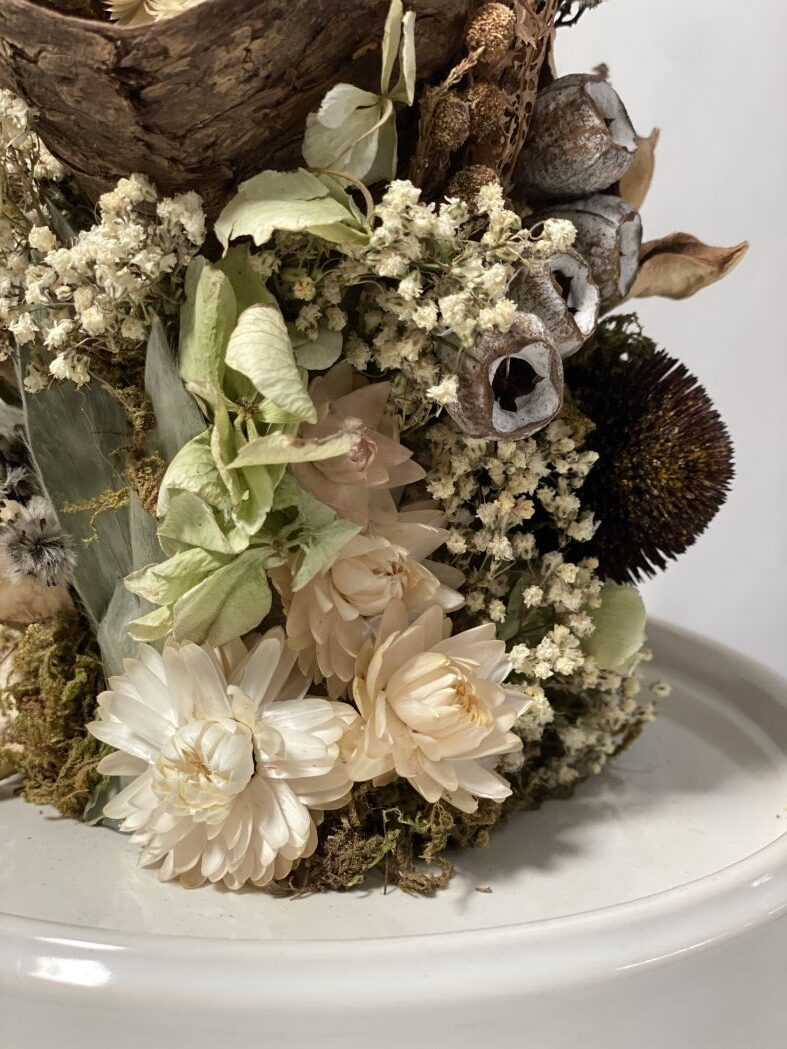 Everlasting Dried Flowers- Excite 6 | Thrive Flowers: Order Online, Flower Delivery Melbourne