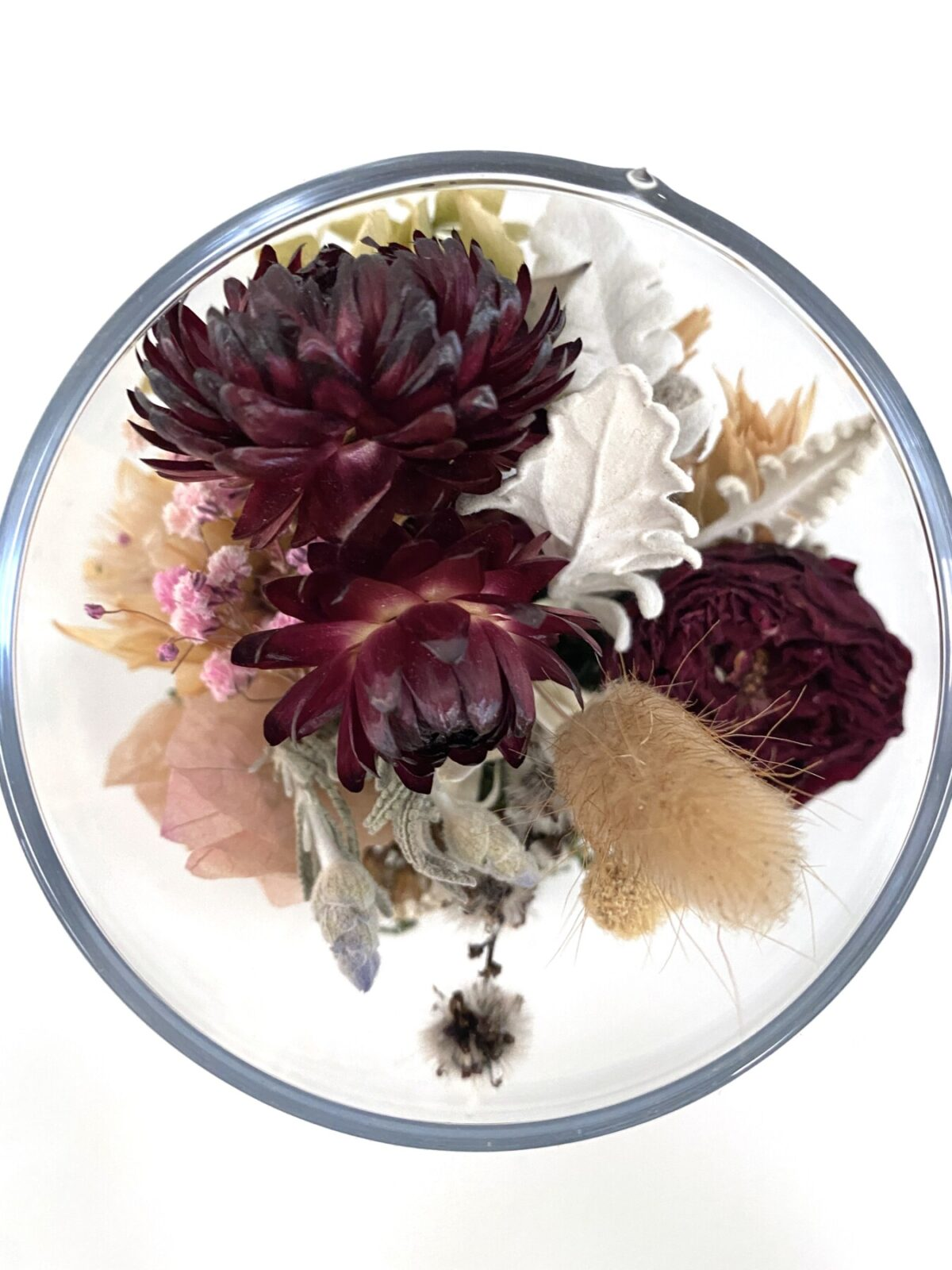 Everlasting Dried Flowers- Hope 2 | Thrive Flowers: Order Online, Flower Delivery Melbourne