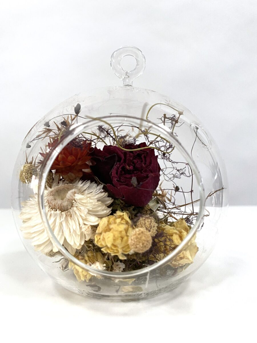 Everlasting Dried Flowers: Motivate   Order Online Flower Delivery Melbourne, Thrive Flowers