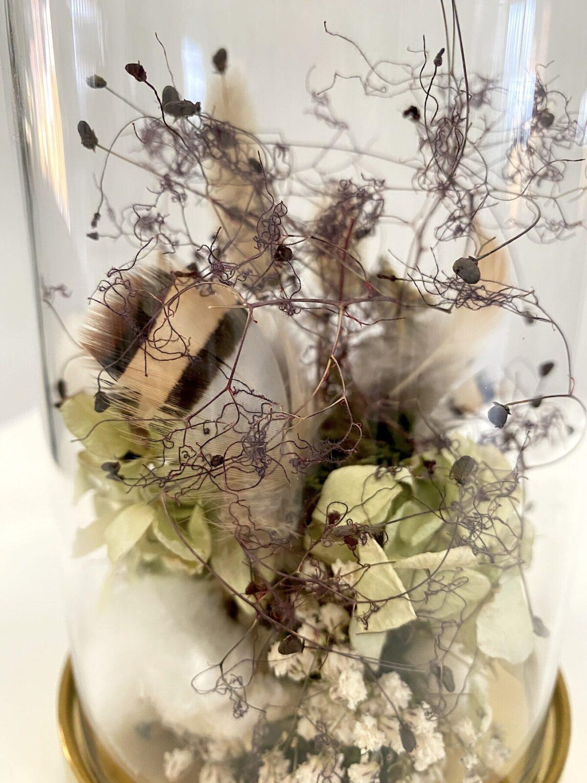 Everlasting Dried Flowers: Wonder | Order Online Flower Delivery Melbourne, Thrive Flowers