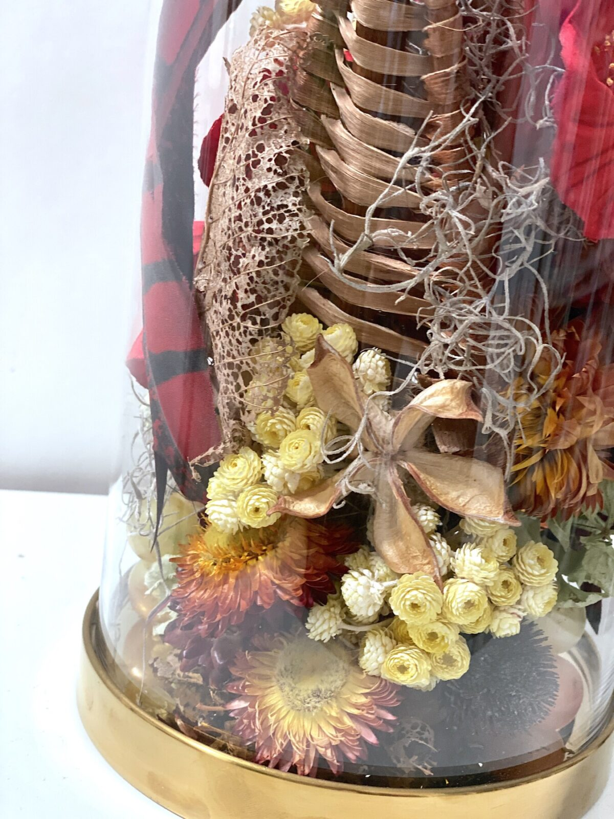 Everlasting Dried Flowers- Determination 6 | Order Online Flower Delivery Melbourne, Thrive Flowers